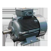 Industrial motor Ex e