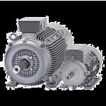 Electric Motors 1LG4, 1LG6