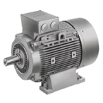 Electric Motors 1LE1